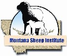MSU Sheep Institute
